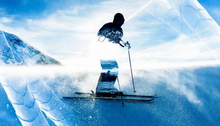 ski_forest-750x430